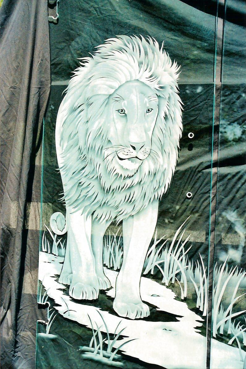 Displaying  Images For Etched Glass Door Designs